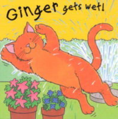 Ginger Gets Wet - Pat the Pet S. (Hardback)