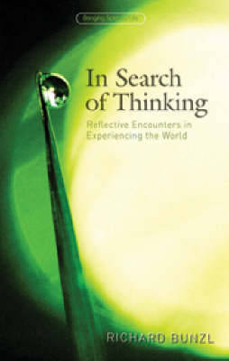 In Search of Thinking: Reflective Encounters in Experiencing the World (Paperback)