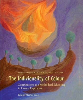 The Individuality of Colour: Contributions to a Methodical Schooling in Colour Experience (Hardback)