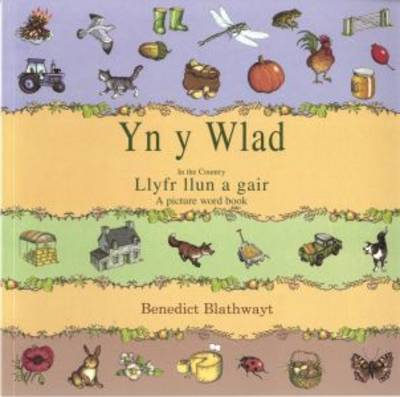 Yn Y Wlad: in the Country (Paperback)