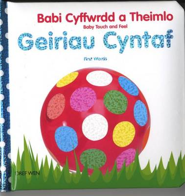 Babi Cyffwrdd a Theimlo/Baby Touch and Feel: Geiriau Cyntaf/First Words (Hardback)