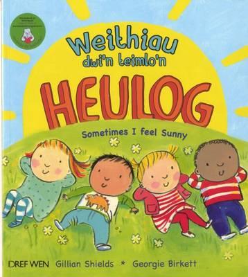 Weithiau Dwi'n Teimlo'n Heulog/Sometimes i Feel Sunny (Paperback)