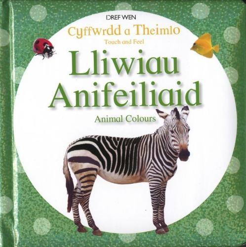 Cyffwrdd a Theimlo/Touch and Feel: Lliwiau Anifeiliaid/Animal Colours (Hardback)