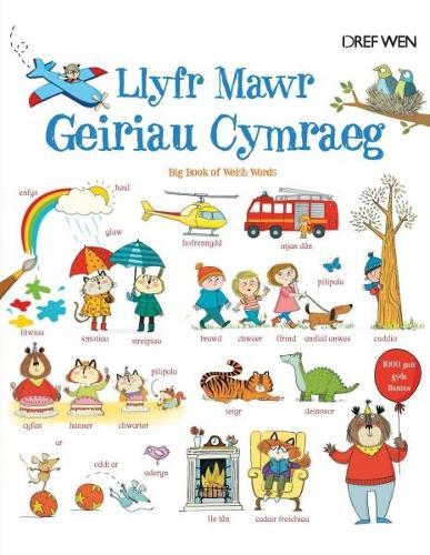 Llyfr Mawr Geiriau Cymraeg (Hardback)