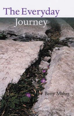 The Everyday Journey: Acknowledging the Integrity of Creation (Paperback)