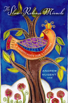 The Slow-Release Miracle: A Spirituality for a Lifetime (Paperback)