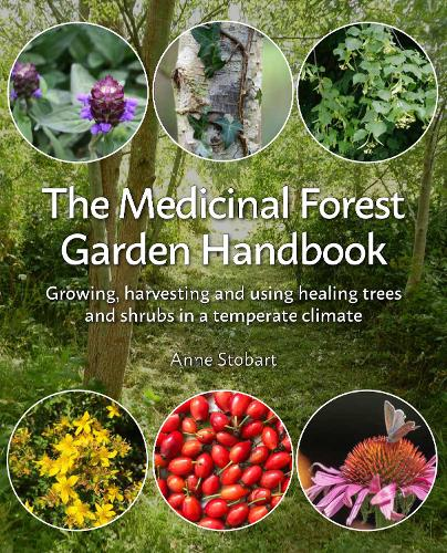 The Medicinal Forest Garden Handbook: Growing, Harvesting and Using Healing Trees and Shrubs in a Temperate Climate (Paperback)