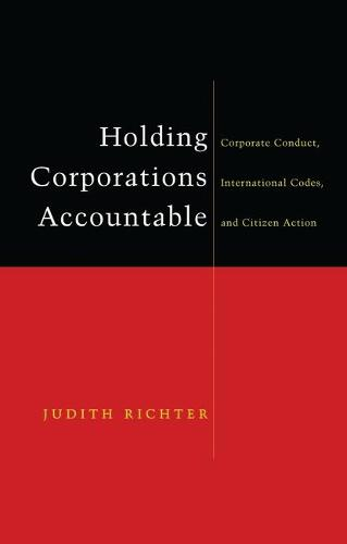 Holding Corporations Accountable: Corporate Conduct, International Codes and Citizen Action (Hardback)