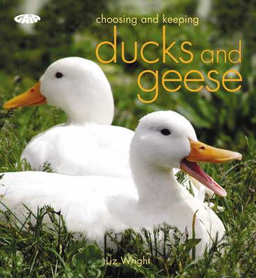 Choosing and Keeping Ducks and Geese (Paperback)