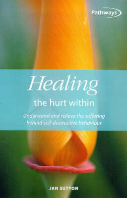 Healing the Hurt within: Understand and Relieve the Suffering Behind Self-destructive Behaviour (Paperback)