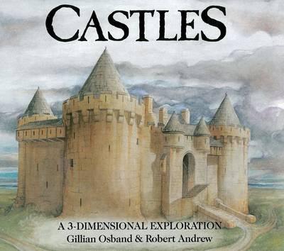 Castles: a 3-Dimensional Exploration (Hardback)