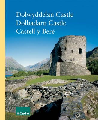 Dolwyddelan Castle - Dolbadarn Castle - Castell Y Bere (Paperback)