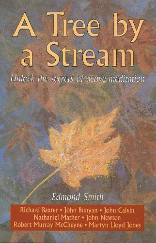 A Tree By a Stream: Unlock the secrets of active meditation (Paperback)