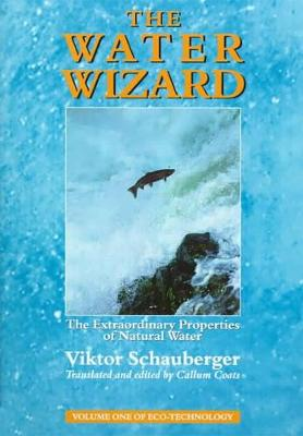 The Water Wizard: The Extraordinary Properties of Natural Water (Paperback)