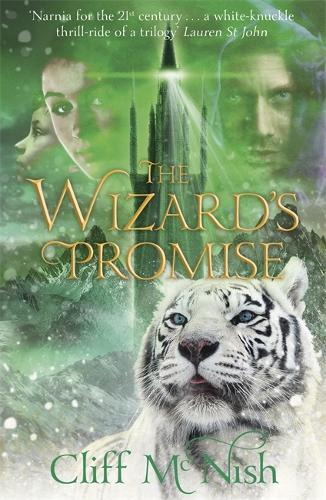 The Doomspell Trilogy: The Wizard's Promise: Book 3 - The Doomspell Trilogy (Paperback)