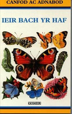Cyfres Canfod ac Adnabod: Ieir Bach yr Haf (Paperback)