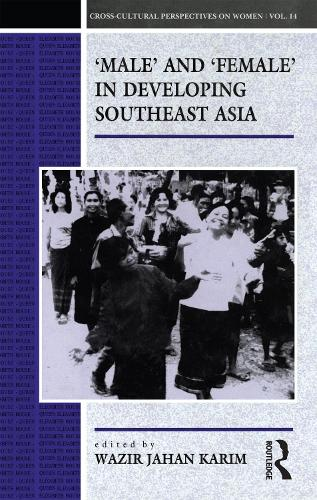 Male and Female in Developing Southeast Asia: Workshop on Research Methodologies, Theoretical Perspectives and Directions for Policy in Gender Studies in Southeast Asia - Cross-cultural Perspectives on Women v. 14 (Paperback)
