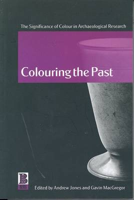 Colouring the Past: The Significance of Colour in Archaeological Research (Paperback)