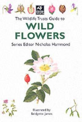 The Wildlife Trusts Guide to Wild Flowers - The Wildlife Trusts series (Paperback)