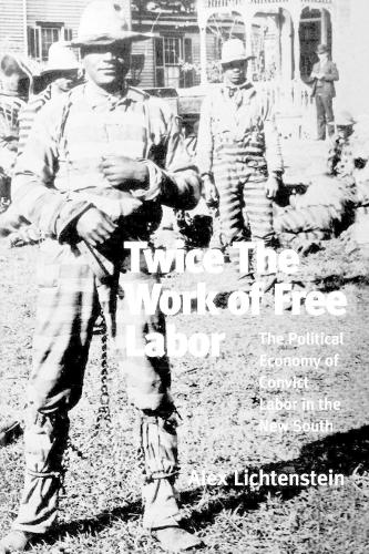 Twice the Work of Free Labor: Political Economy of Convict Labor in the New South (Paperback)