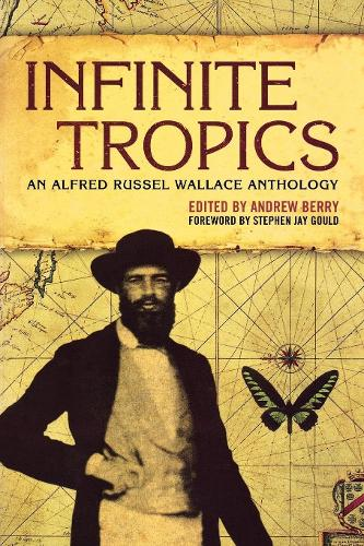 Infinite Tropics: An Alfred Russel Wallace Collection (Paperback)