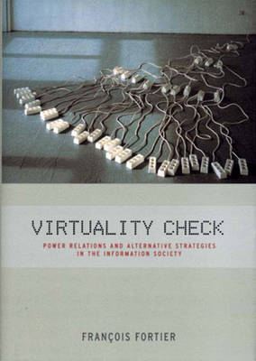 Virtuality Check: Power Relations and Alternative Strategies in the Information Society (Hardback)