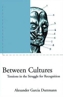 Between Cultures: Tensions in the Struggle for Recognition - Phronesis S. (Hardback)