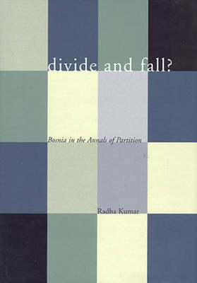 Divide and Fall?: Bosnia in the Annals of Partition (Hardback)