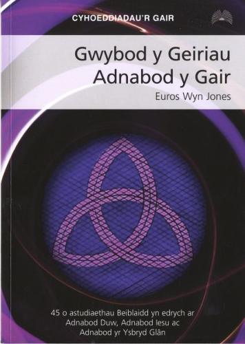 Gwybod y Geiriau Adnabod y Gair (Paperback)