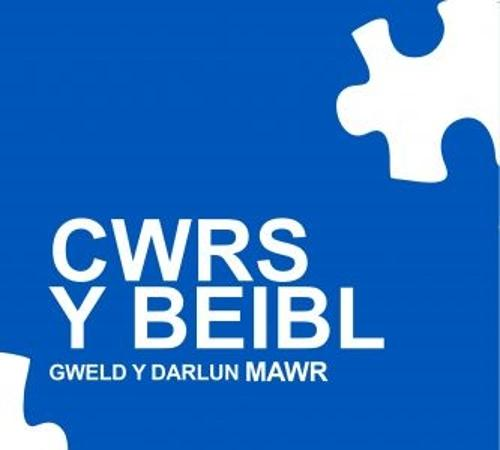 Cwrs y Beibl (Paperback)