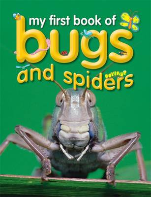 Bugs and Spiders - My First Book of... (Paperback)