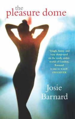 The Pleasure Dome (Paperback)