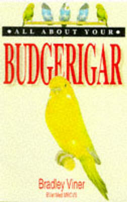 All About Your Budgerigar - All about your.... (Paperback)