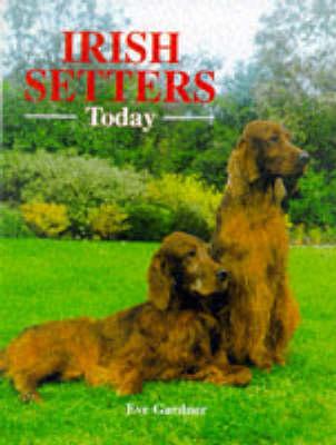 Irish Setters Today - Book of the Breed S (Hardback)