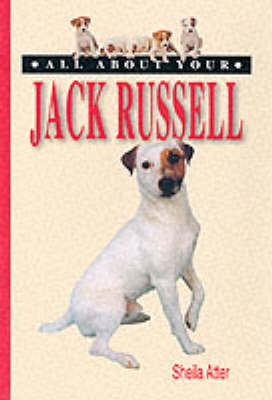All About Your Jack Russell - All About Series (Paperback)