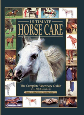 Ultimate Horse Care - The Ultimate (Hardback)