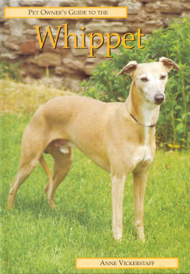 Pet Owner's Guide to the Whippet - Pet Owner's Guide S. (Hardback)