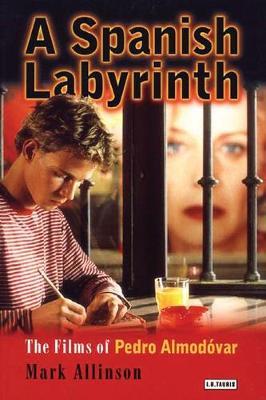 A Spanish Labyrinth: The Films of Pedro Almodovar (Paperback)