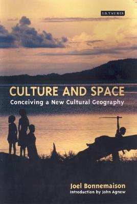 Culture and Space: Conceiving a New Cultural Geography - International Library of Human Geography v. 8 (Paperback)