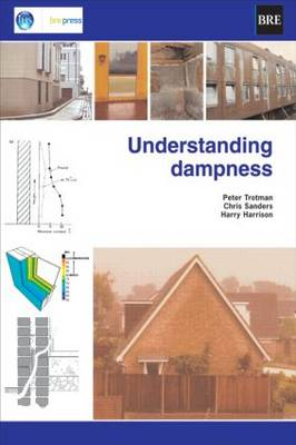Understanding Dampness: Effects, Causes, Diagnosis and Remedies (BR 466) (Paperback)