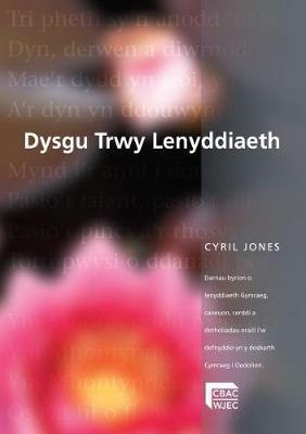 Dysgu trwy Lenyddiaeth (Paperback)