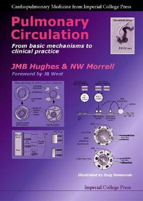 Pulmonary Circulation: From Basic Mechanisms To Clinical Practice - Cardiopulmonary Medicine From Imperial College Press (Hardback)