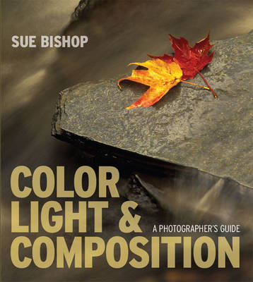 Color, Light and Composition: A Photographer's Guide (Paperback)
