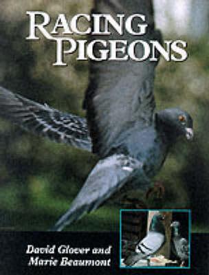 Racing Pigeons (Hardback)
