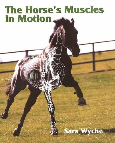 Horse's Muscles in Motion (Hardback)