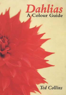 Dahlias: A Colour Guide (Hardback)