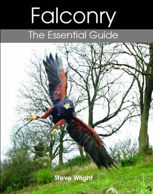 Falconry: The Essential Guide (Hardback)