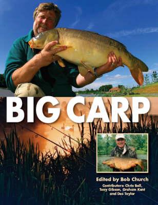 Big Carp (Hardback)