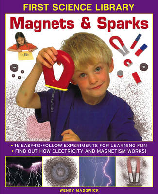 First Science Library: Magnets & Sparks (Hardback)