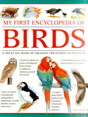 My First Encylopedia of Birds (Giant Size) (Paperback)